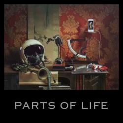 PAUL KALKBRENNER - Parts Of Life