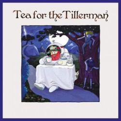 STEVENS CAT - Tea For The Tillerman 2