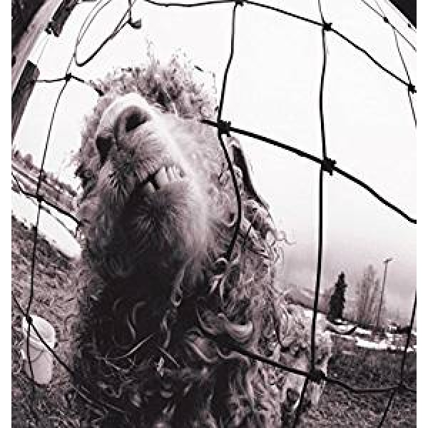 PEARL JAM - Vs (expanded Edition)